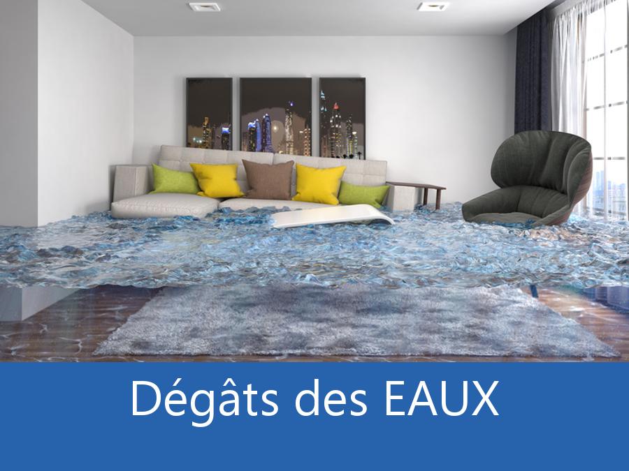 expertise humidité 88, expert humidité Gerardmer, cause moisissure Epinal, solutions hulidité Les Vosges,